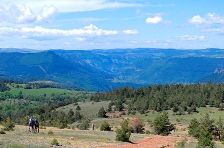 paysage site des menhirs